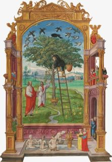 The symbol of the tree of life, known to alchemists as the philosophical tree http://www.moleiro.com/en/miscellanea/splendor-solis/miniatura/1631