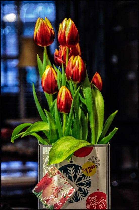 Box-of-Tulips-New-1200