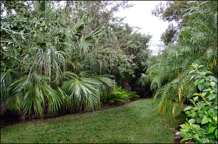 Far-side-garden-1200