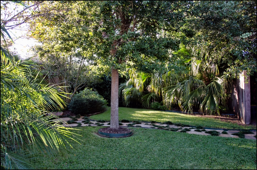 Pathway-Palms-rt-side-1200