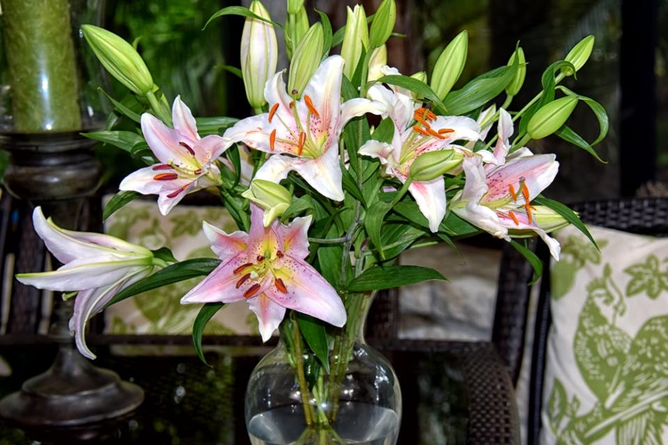 Birthday-Lilies_linda